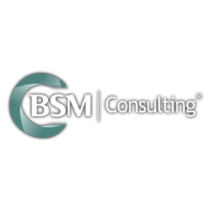 BSM-Consulting